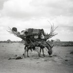 Nomad Possessions by Padraig Grant